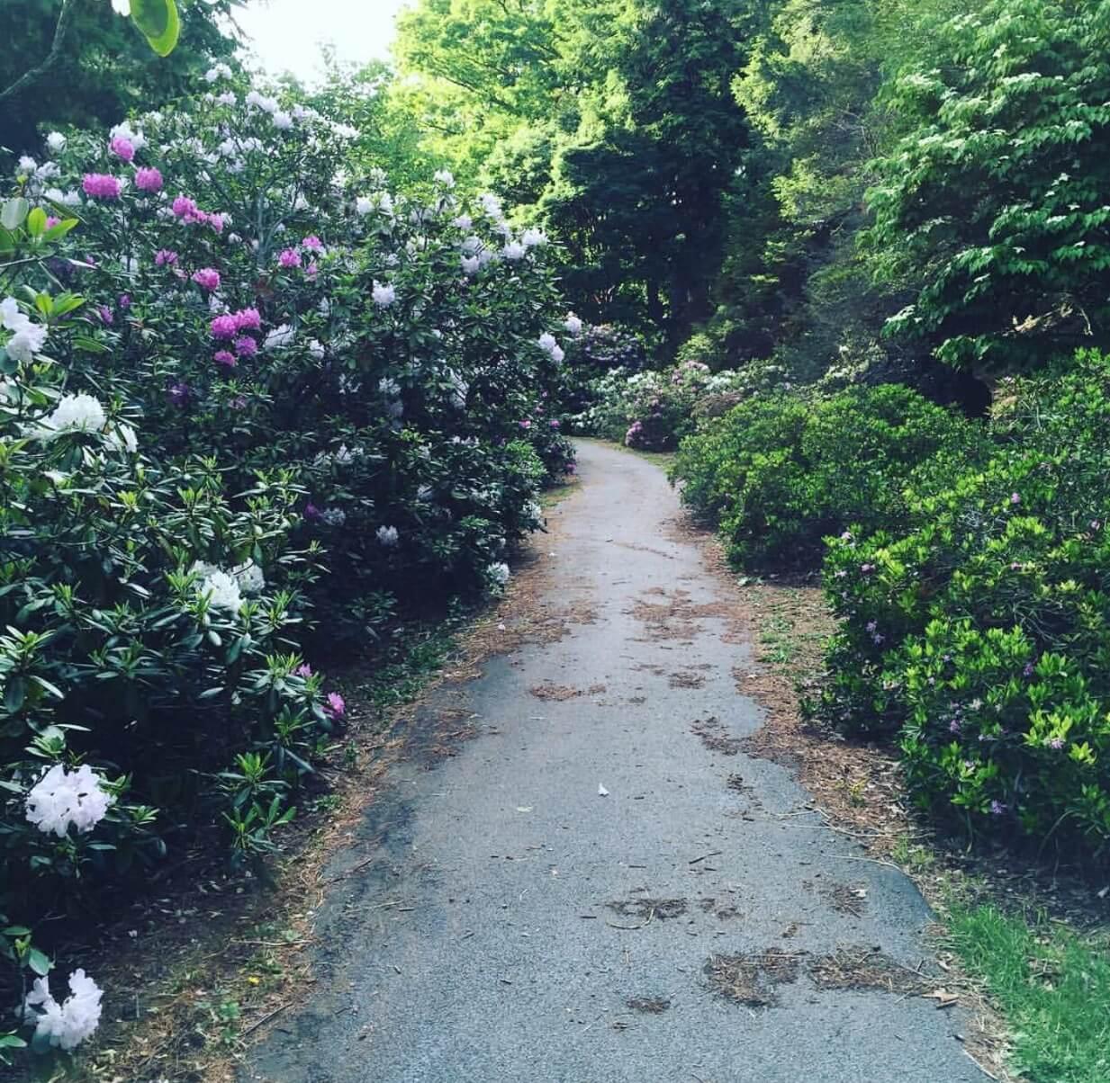 7- Highland Park