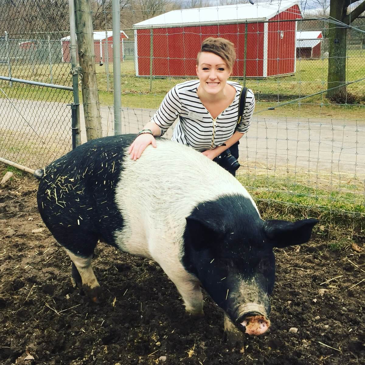 Paige Doerner of Lollypop Farm is all about sharing your city experiences with others.
